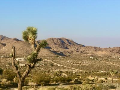 208 SUNBURST DRIVE, Joshua Tree, CA 92252 - Photo 2