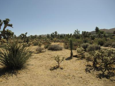 8066 SAGE AVE, Yucca Valley, CA 92284 - Photo 2