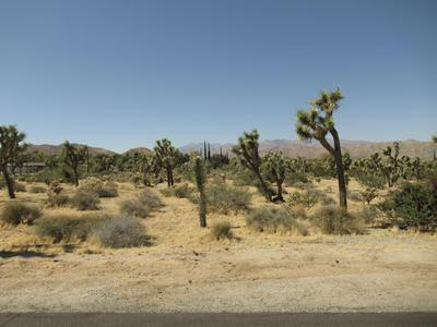8040 SAGE AVE, Yucca Valley, CA 92284 - Photo 2