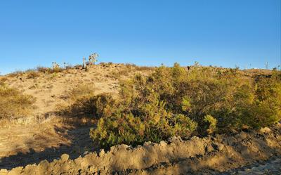 0 HILTON AVE, Yucca Valley, CA 92284 - Photo 1