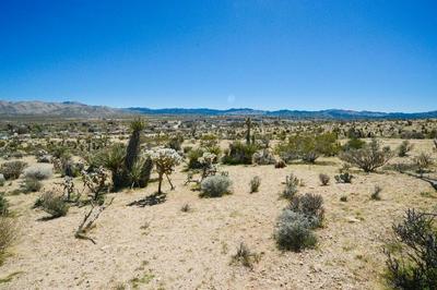 1 AVALON, Yucca Valley, CA 92284 - Photo 2