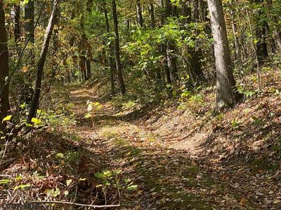 LOT ON CEMENT CAMP LANE, Petersburg, PA 16669 - Photo 1