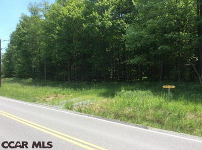 LOT 3 SPRUCE ROAD, Moshannon, PA 16859 - Photo 1