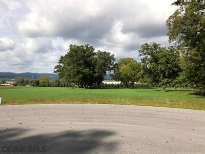 LOT 20 0 WELLNESS LANE # LOT20, McElhattan, PA 17748 - Photo 1