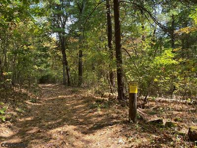 LOT ON CEMENT CAMP LANE, Petersburg, PA 16669 - Photo 2