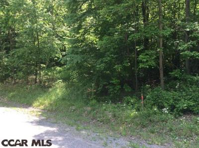 LOT 6R SPRUCE ROAD, Moshannon, PA 16859 - Photo 1
