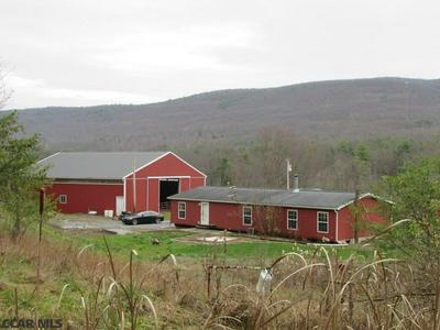 5050 S EAGLE VALLEY RD, Julian, PA 16844 - Photo 2