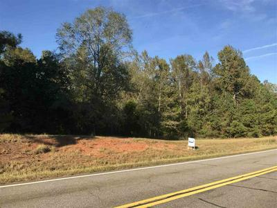 LOT 11 DAMES FERRY ROAD, Forsyth, GA 31029 - Photo 1