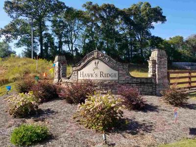 160 HAWKS RIDGE TRCE, Byron, GA 31008 - Photo 1
