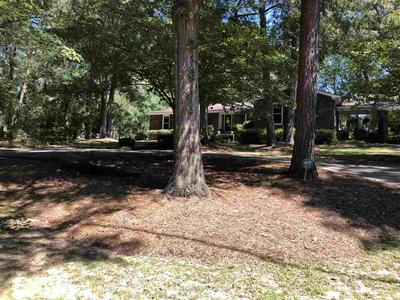 812 WOODLAND DR, Montezuma, GA 31063 - Photo 2