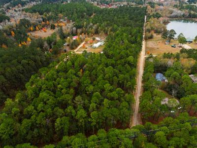 MILES ST TY STOKES ROAD, Cochran, GA 31014 - Photo 2