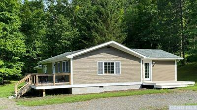 463 DOODLETOWN RD, Gallatin, NY 12502 - Photo 2