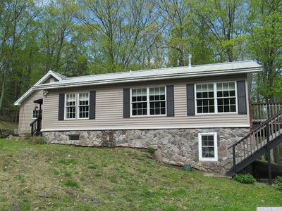 217 MOUNTAIN RD, Stanford, NY 12581 - Photo 1