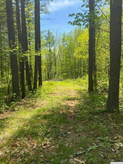 0 W SILVER SPUR RD., Cairo, NY 12413 - Photo 2