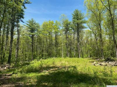0 W SILVER SPUR RD., Cairo, NY 12413 - Photo 1