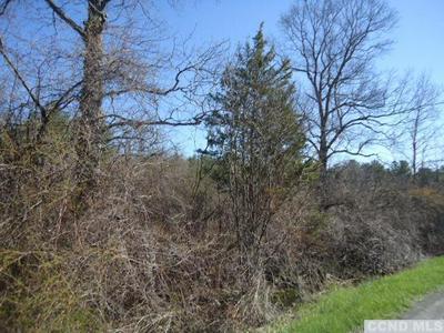 0 OLD PLANK ROAD, Greenville, NY 12083 - Photo 2