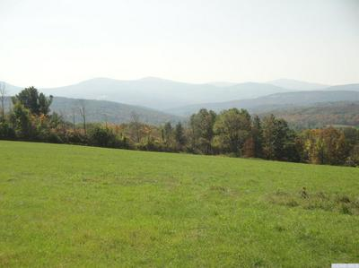 0 COUNTY ROUTE 360, Rensselaerville, NY 12120 - Photo 1