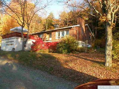 144 PEACEFUL VALLEY RD, Canaan, NY 12029 - Photo 2