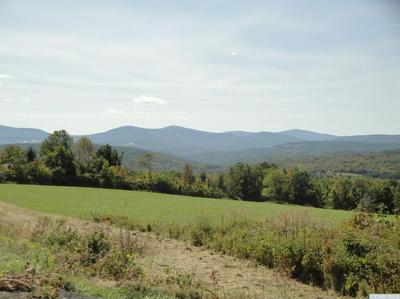 0 COUNTY ROUTE 360, Rensselaerville, NY 12120 - Photo 2