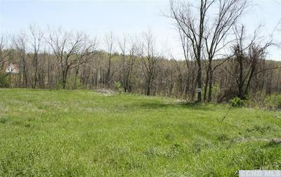 0 STATE ROUTE 23, Claverack, NY 12513 - Photo 2