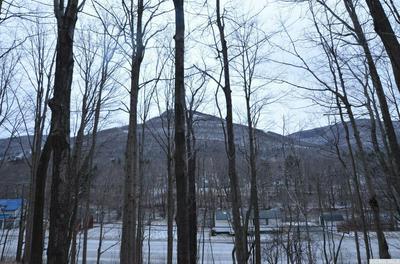 8050 MAIN ST, Hunter, NY 12442 - Photo 1