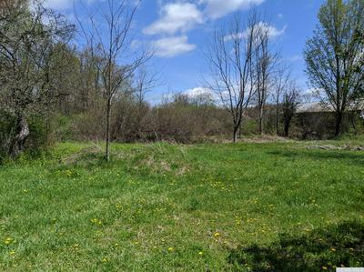 614 COUNTY ROUTE 405, Westerlo, NY 12193 - Photo 2