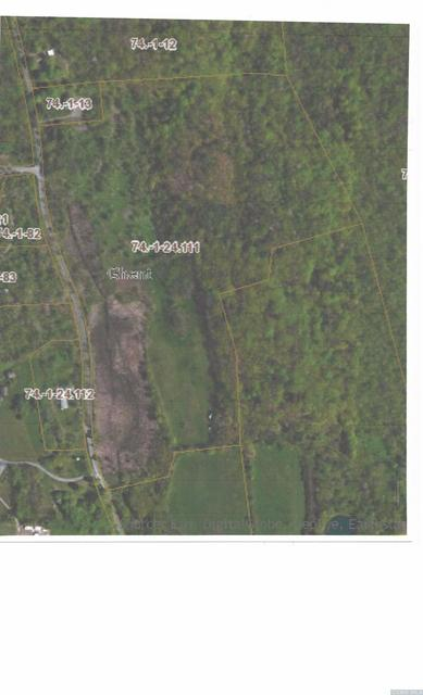 0 LETTERS S ROAD, Ghent, NY 12075 - Photo 2