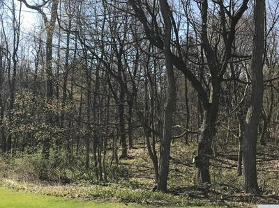0 RT 145, East Durham, NY 12423 - Photo 2
