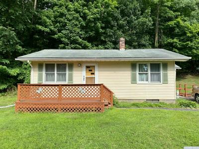153 RUDOLPH WEIR JR RD, Cairo, NY 12058 - Photo 1