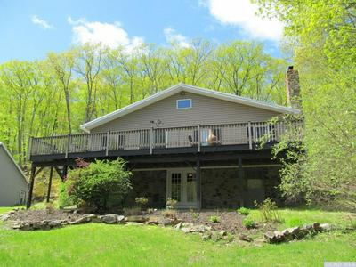 217 MOUNTAIN RD, Stanford, NY 12581 - Photo 2