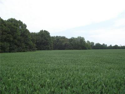31 ACRES E 1500TH, Greenup, IL 62428 - Photo 2