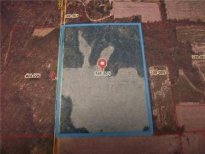 31 ACRES E 1500TH, Greenup, IL 62428 - Photo 1