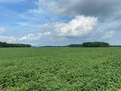 13AC ST RT 286, Sterling Twp, OH 45176 - Photo 1