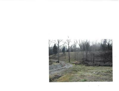 PENNY ROAD, Franklin Township, OH 45120 - Photo 2