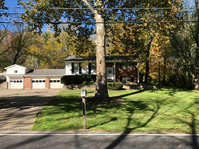 5251 BELFAST OWENSVILLE RD, Stonelick Twp, OH 45103 - Photo 2