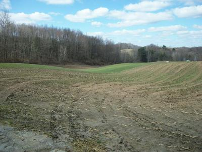 OKLAHOMA SALEM RD, DUBOIS, PA 15801 - Photo 2