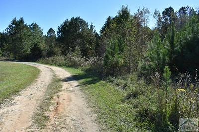 0 WILLOW STREET, Maxeys, GA 30667 - Photo 1