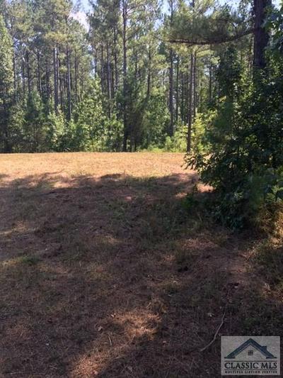 0 FAUST FARM ROAD, Arnoldsville, GA 30619 - Photo 2