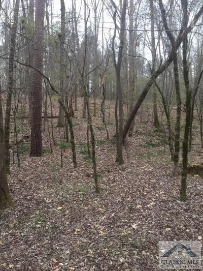 0 WILSON, Arnoldsville, GA 30619 - Photo 2