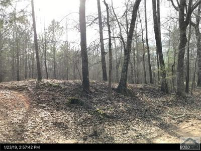 LOT #4 GLADE ROAD, Carlton, GA 30627 - Photo 1