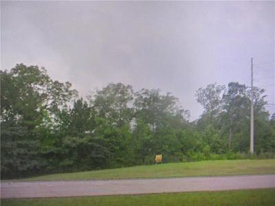 0 HWY I-49 & HWY 112, LECOMPTE, LA 71346 - Photo 2