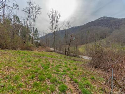 250 PAINT FORK RD, Barnardsville, NC 28709 - Photo 2