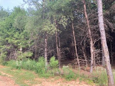 1668 MAPLE SPRINGS CH RD, Shelby, NC 28152 - Photo 2