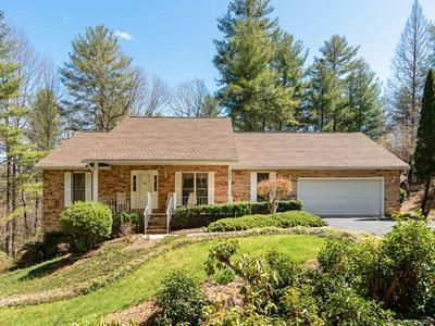 4045 LITTLE RIVER RD, HENDERSONVILLE, NC 28739 - Photo 2