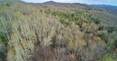 0 BACK COUNTRY ROAD, Tuckasegee, NC 28783 - Photo 2