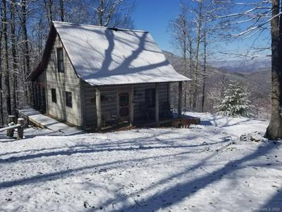 2630 CONLEY MOUNTAIN ASSOC RD, Whittier, NC 28789 - Photo 1
