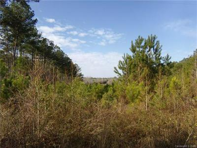 TBD ROSS MOORE ROAD, Chesterfield, SC 29709 - Photo 2