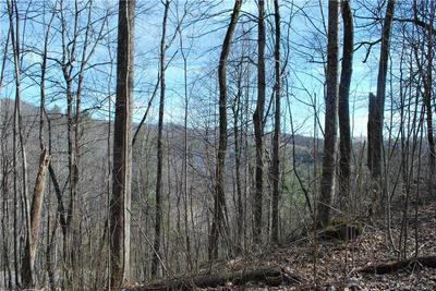 135 E SPLITRAIL DR # 14, Hendersonville, NC 28792 - Photo 1