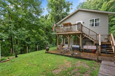 113 RIPPLE BRANCH RD, Barnardsville, NC 28709 - Photo 2