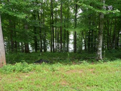 137 GLASS WATER NW POINT #78, Valdese, NC 28690 - Photo 2